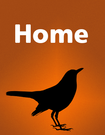 Home cover, orange and a black bird